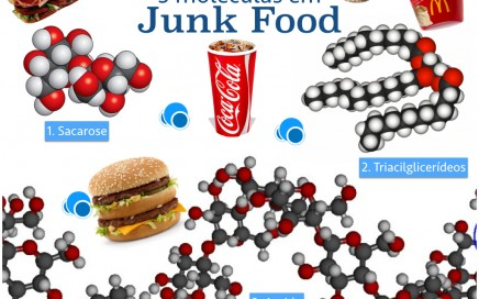3moleculas da junk food.001