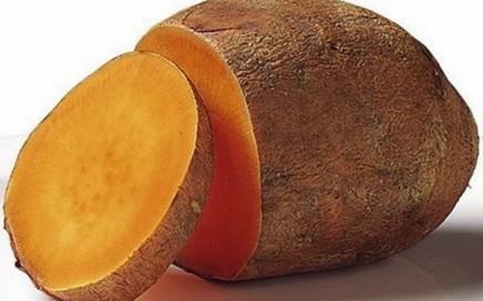 batata yacon emagrece