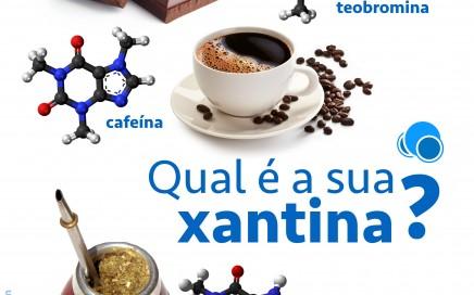 Infográfico: xantinas